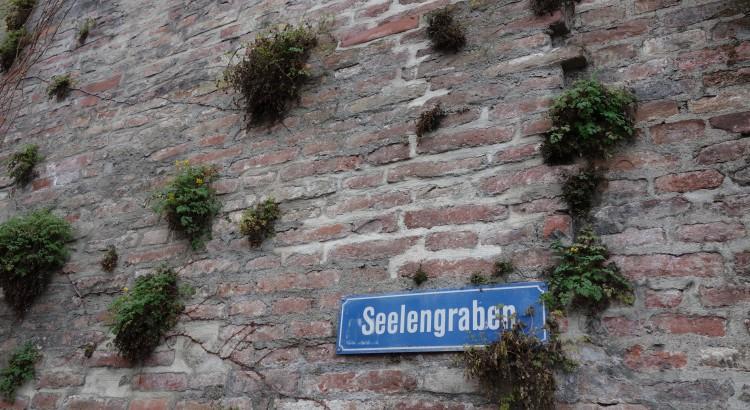 City wall inhabitants I